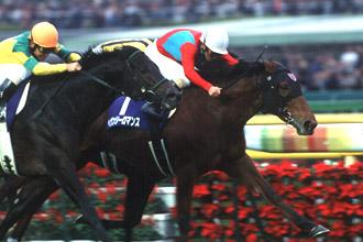 http://www.jra.go.jp/datafile/seiseki/g1/akiten/result/photo/2005-3.jpg