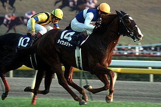 http://www.jra.go.jp/datafile/seiseki/g1/akiten/result/photo/2006-2.jpg