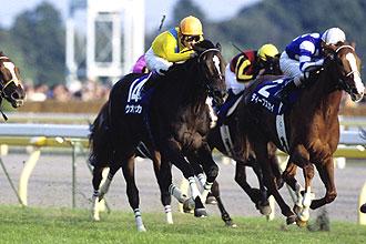http://www.jra.go.jp/datafile/seiseki/g1/akiten/result/photo/2008-2.jpg
