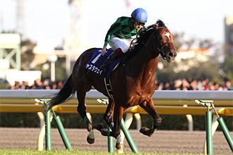 http://www.jra.go.jp/datafile/seiseki/g1/akiten/result/photo/2013-4.jpg