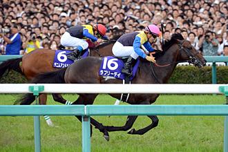 http://www.jra.go.jp/datafile/seiseki/g1/takara/result/photo/2015-2.jpg