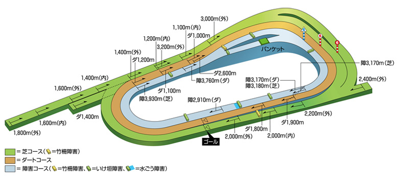 http://www.jra.go.jp/facilities/race/kyoto/course/img/pic_course_3d.jpg
