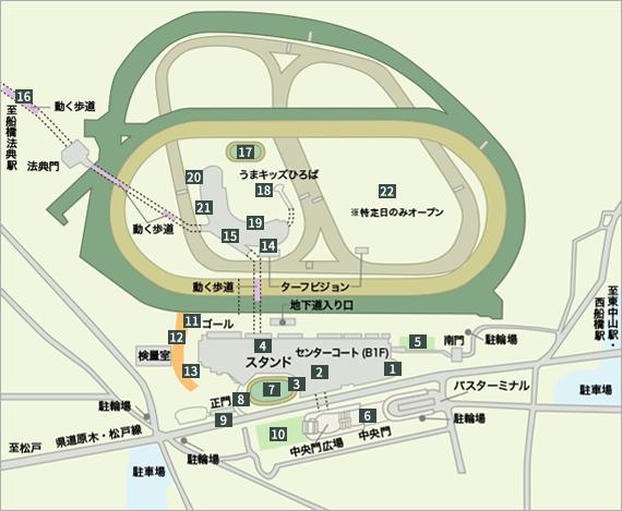 中山 競馬 場