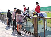 東京競馬場(馬車)