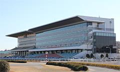競馬 浦和 楽天競馬:地方競馬全場のオッズ・予想・投票・レース映像を提供