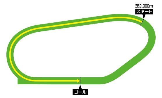 レパーズタウン競馬場 芝2000メートル コース図