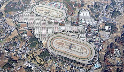 美浦トレーニング・センターの空撮写真